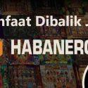 Manfaat Dibalik Judi Habanero